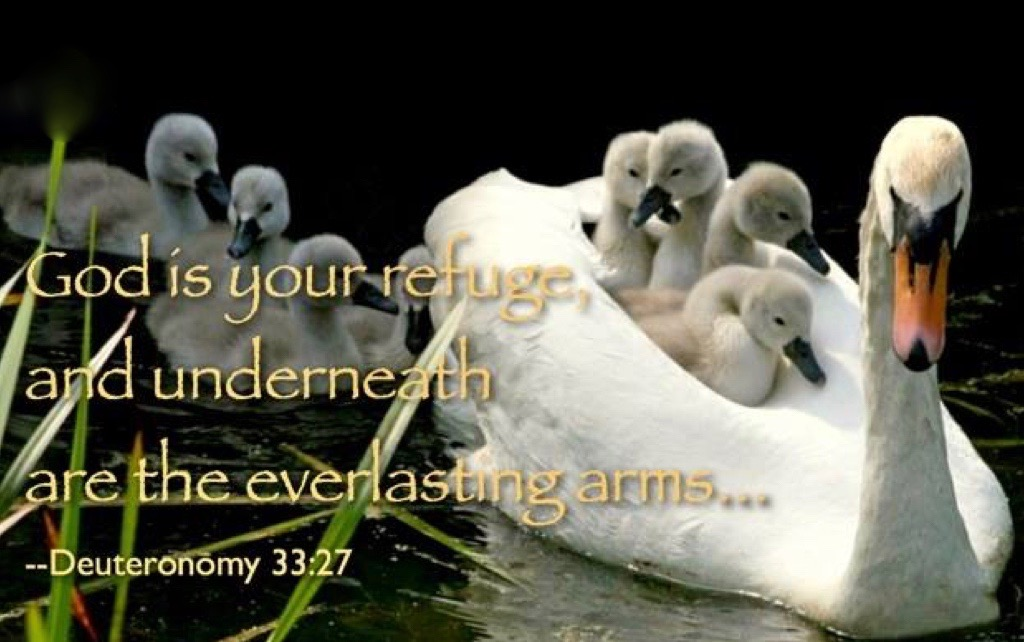 "Hymn day: ""Leaning on the Everlasting Arms"""
